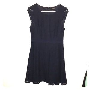 The Limited Dark Blue Navy Lace Dress
